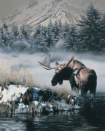 Northern Light - Moose by Rod Frederick