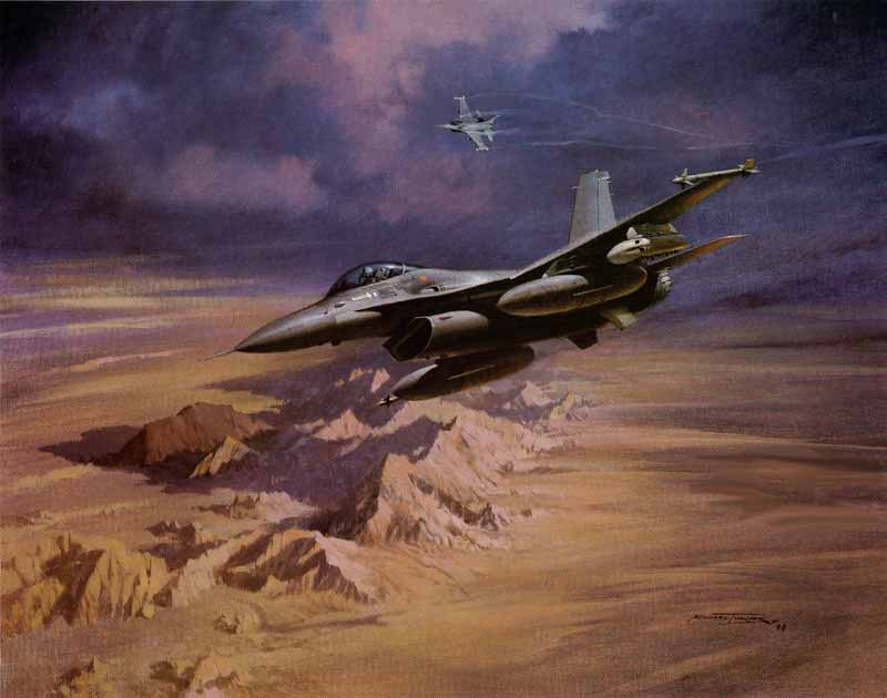 Fighting Falcons  by Michael Turner